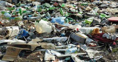 Año 2020  balance negativo para el ambiente